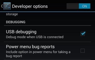 1. Utilisation de l'option Developer