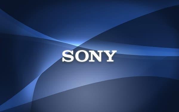 contrôleur par Sony